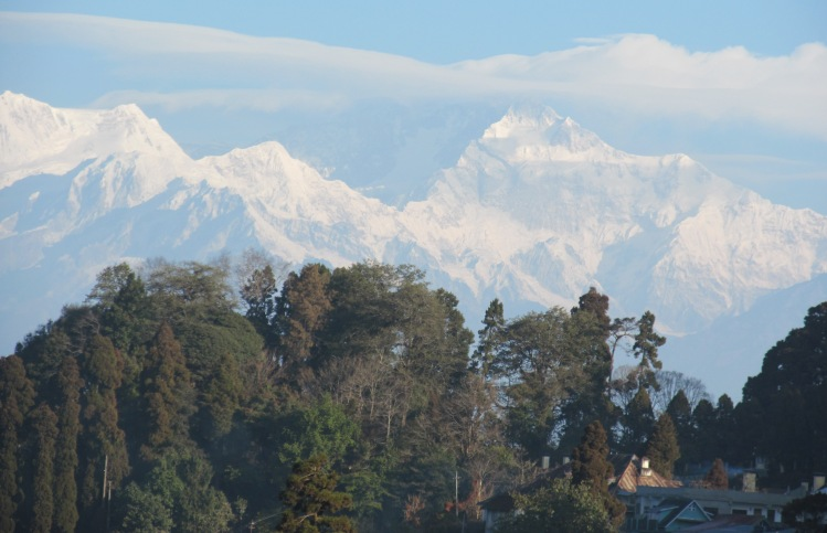 Darjeeling Hotel Sanderling কোলাহল Kolahal Travel Guide